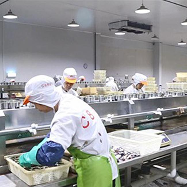 Высокое качество консервы тунец в рассоле