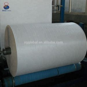 China factory wholesale PP woven fabric in rolls