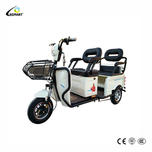 CE approved Leisure Scooter electric tricycle adults and phillips electric bicycle