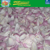 Hot sale delicious IQF red onion exporters india in good price in bulk