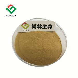 New Batch Turkey Tail Mushroom Coriolus Versicolor Rainbow Conk Extract  Powder