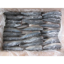 High Quality Seafood indian horse frozen mackerel fish HGT