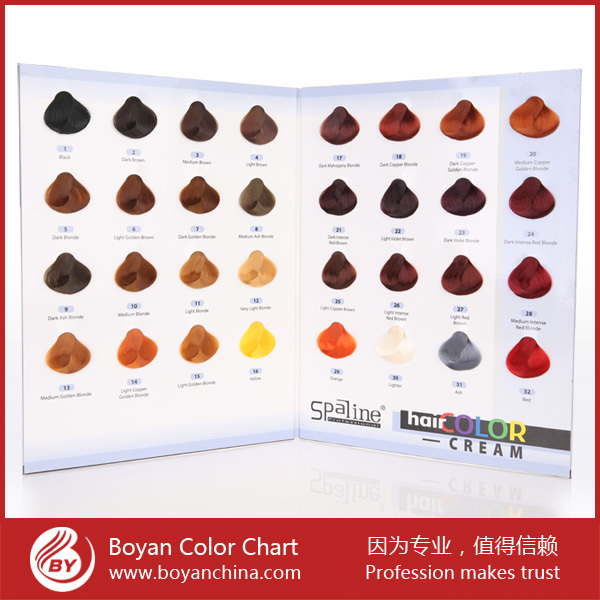 Loyal Supplier Hair Color Swatch Chart Hairdresser Color Chart With