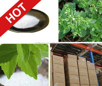 natural extract food ingredient / china manufacturer stevia