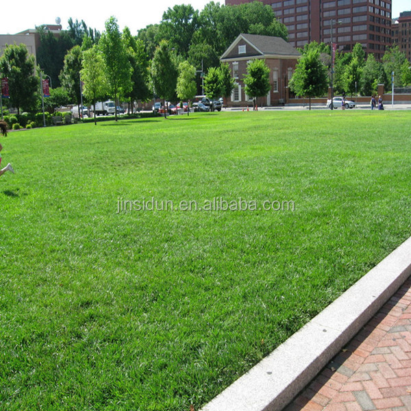 Landscape Staple For Artificial Grassbv Certifications Buy High