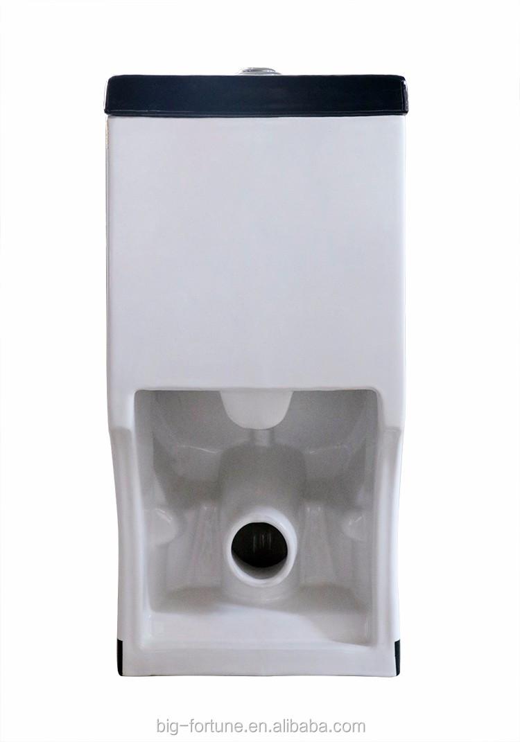 Lavage Grande Eau Fix Au Sol Wc Toilette Wc Chimique Pour La