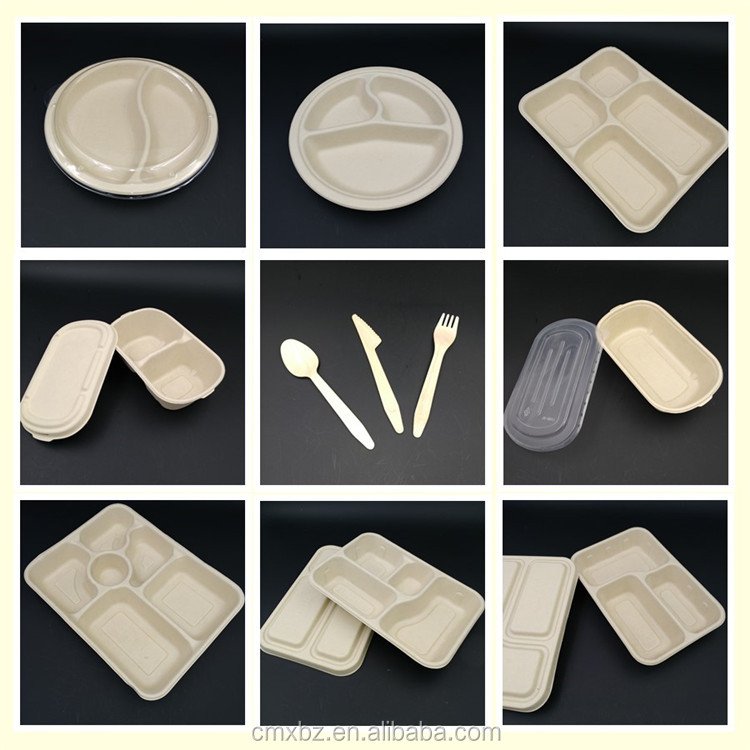 Sugarcane 500ml oval takeaway eco bagasse box for food