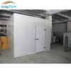 freezer cold room price for meat chicken fish project