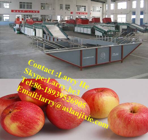 fruits washing waxing machine/apple waxing machine/fruit processing line(washing waxing grading)