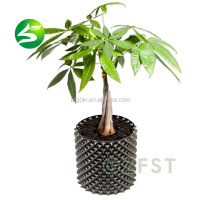 Factory price plastic nursery air pruning pot for tree plant