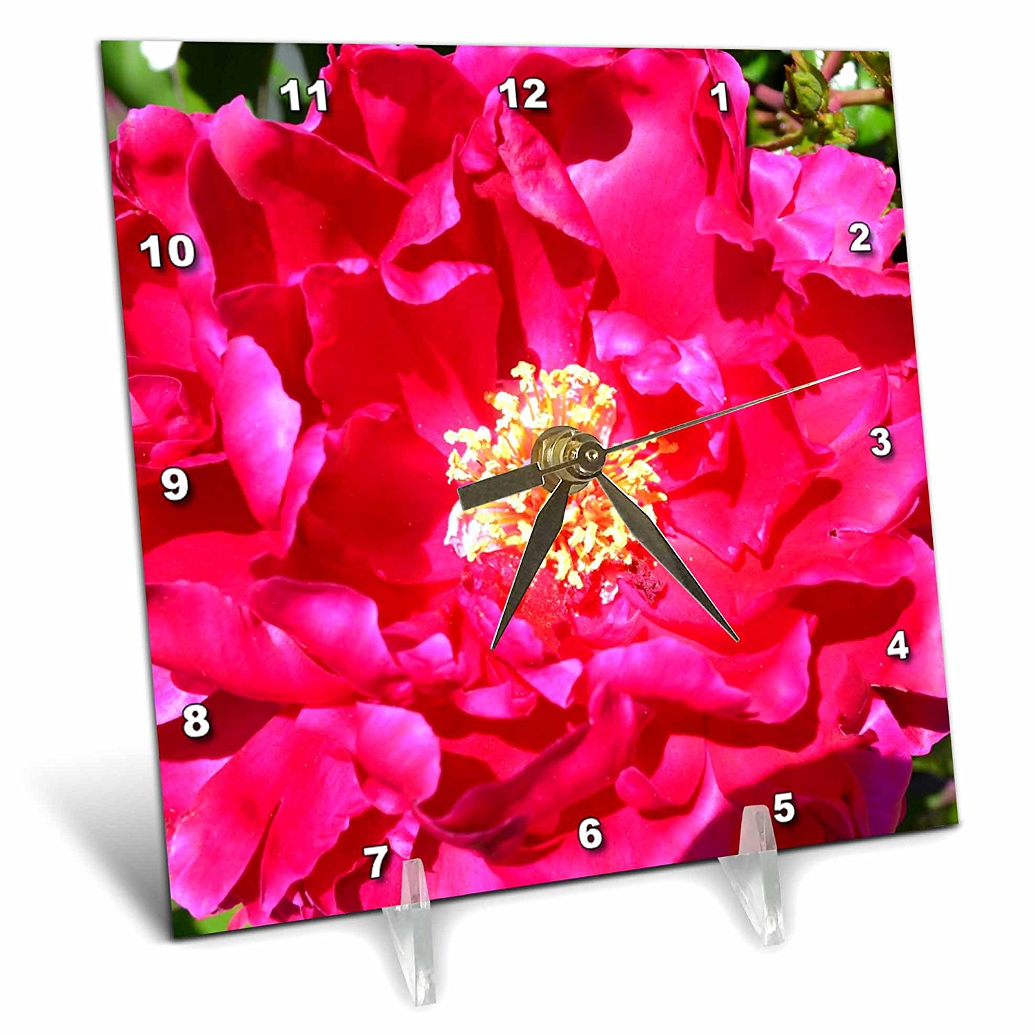 3dRose dc_27544_1 Red Wild Rose Floral-Desk Clock, 6 by 6-Inch