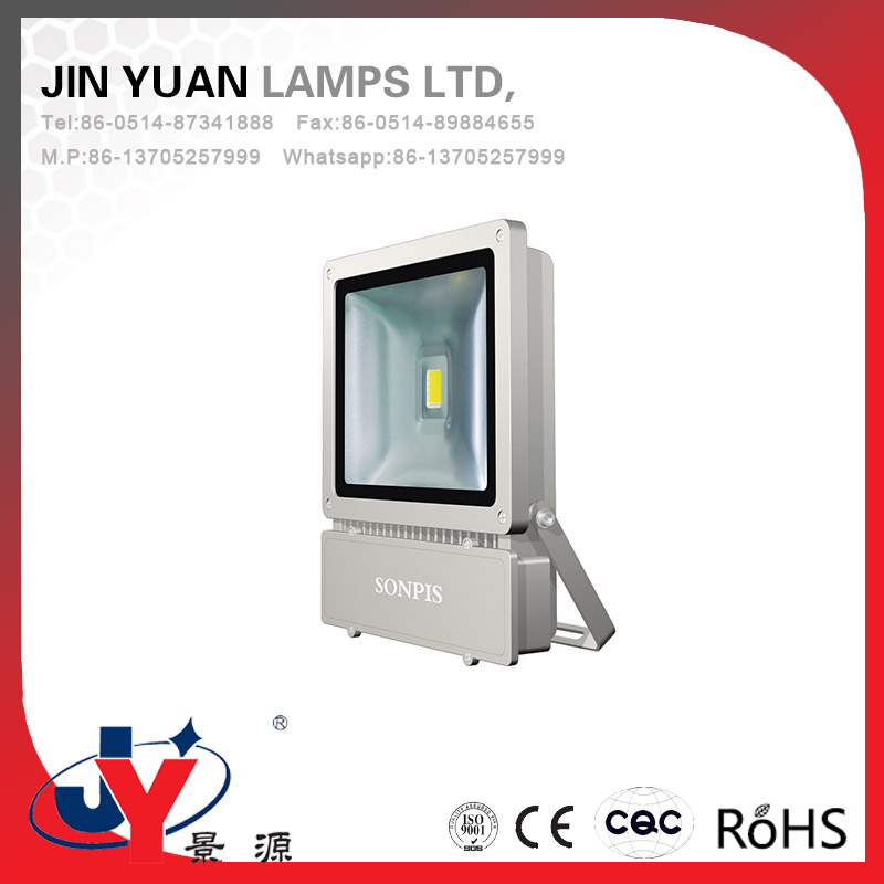 Top quality Less investment 100w led flood light