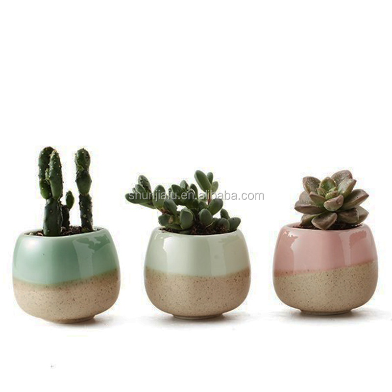 Office Desktop Decoratie Mini Succulent Plantenbakken Keramische