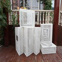 Low price plastic cage for quail/poultry transport cage