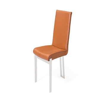 Fashionable High quality modern dliving room chair With metal legs