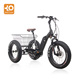2018 Hot sale fat tire electric trike cargo bike 3 wheel bicycle adults for shopping