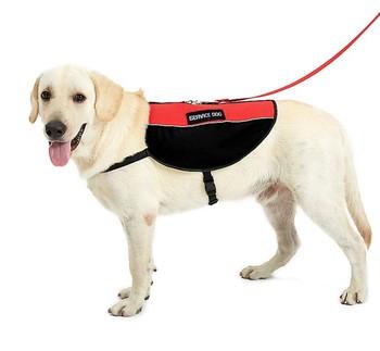 emotional support service dog mesh pet harness vest dog harness cool comfortable