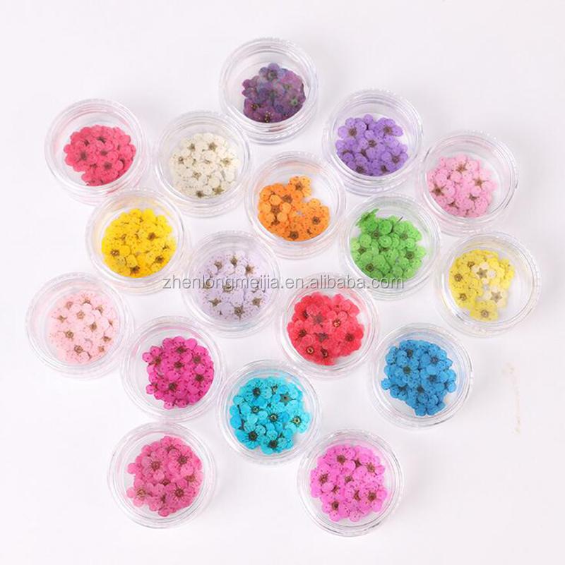 Новые модные 12 видов цветов украшения сухой цветок для ногтей лак для ногтей