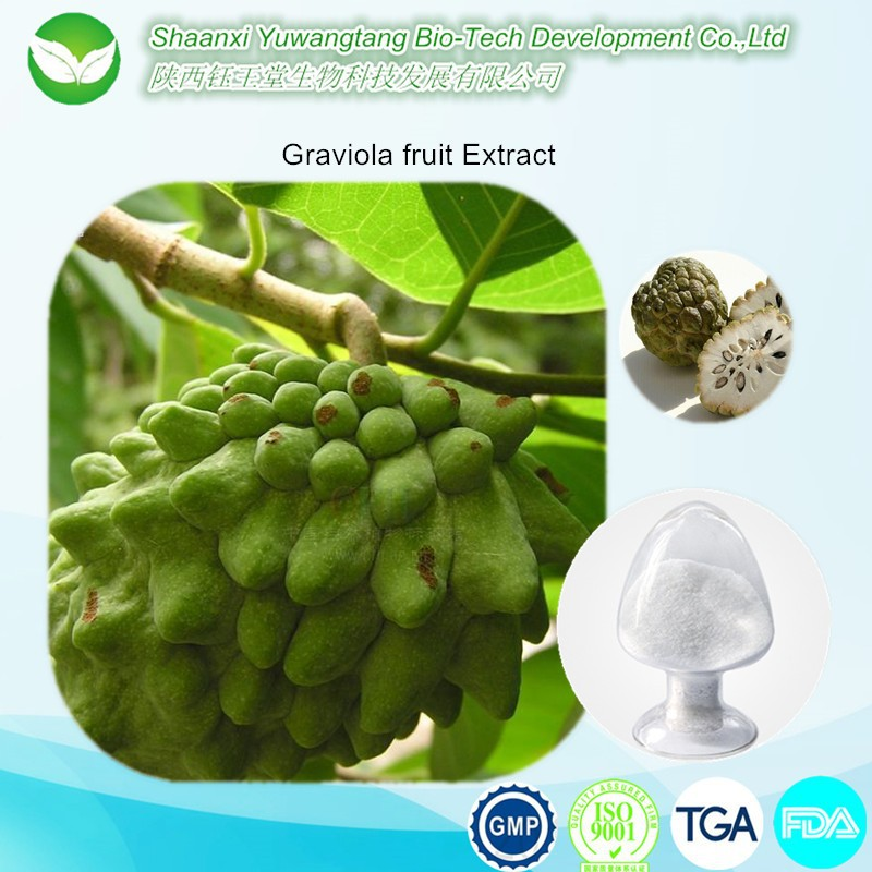 100% Natural Graviola Soursop/guanabana Extract