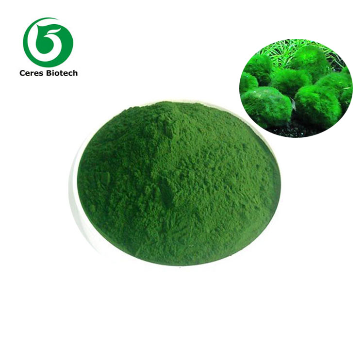 Wholesale High Quality Chlorella Powder For Bodybuilding Supplements
