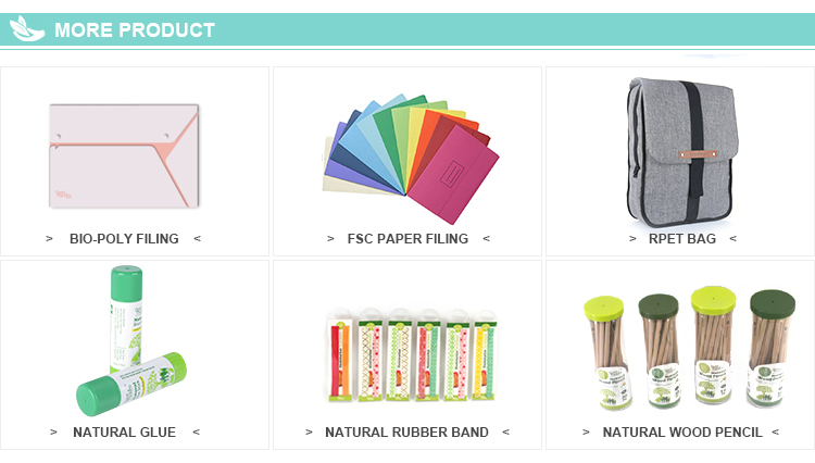 Swing Arm report cover eco-friendly a4 size presentation file folder, A4 display book office suspension file folder