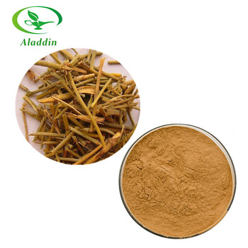 Gmp Factory Supply 100% Natural Ma Huang Extract Powder With High Quality -  Buy Ma Huang Extract Powder,Ephedra Extract,Ma Huang Powder Product on