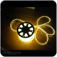 Party supplies wholesale warm white rope led light noel