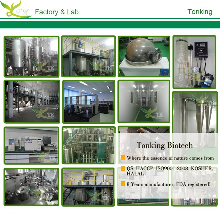 Tonking Supply High Quality Rhodiola Rosea Extract