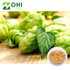 Wholesale Powder Bulk Hop Flower Extract Humulus lupulus extract for Beer