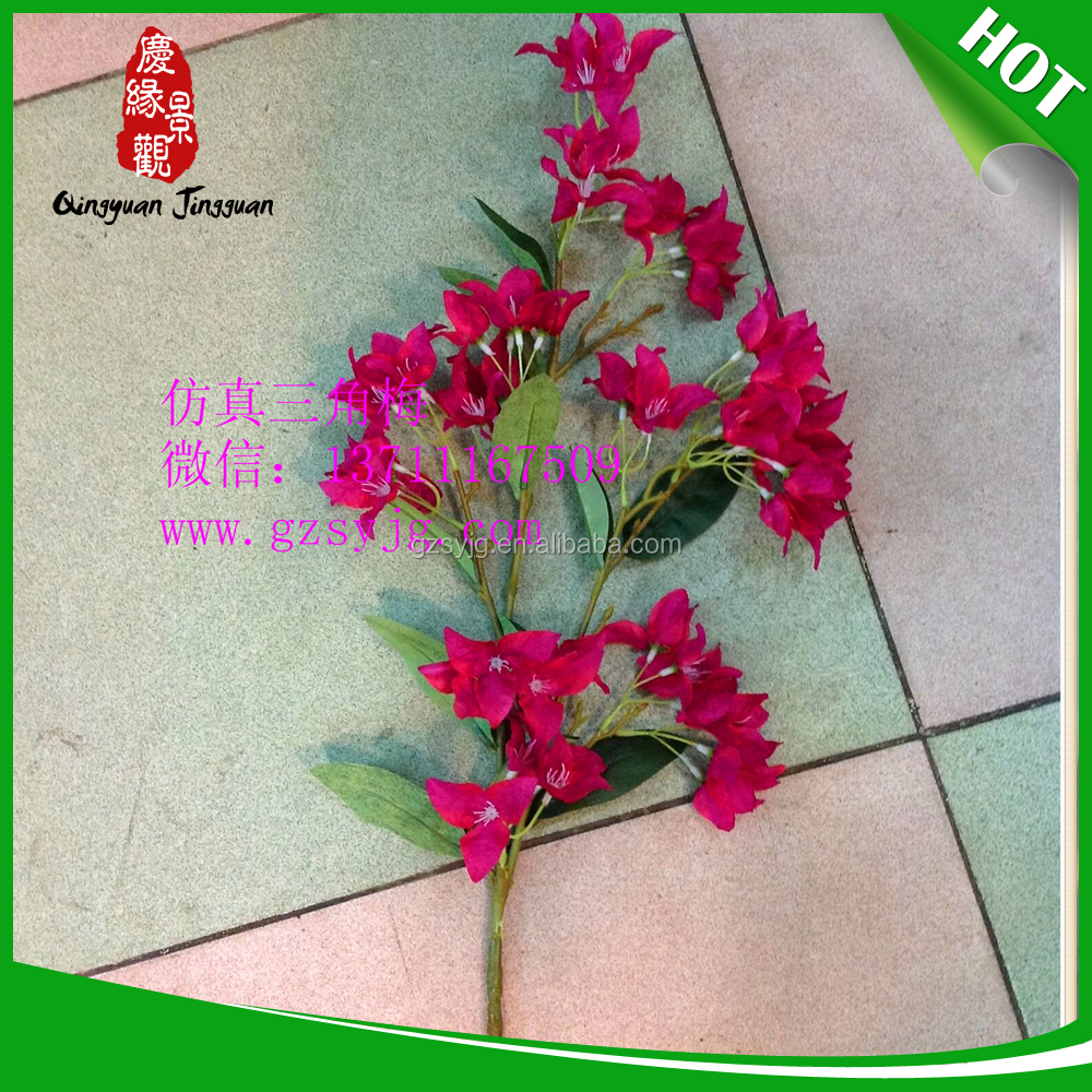 Bonsai Tree Wire Suppliers And Manufacturers At Wiring Wisteria
