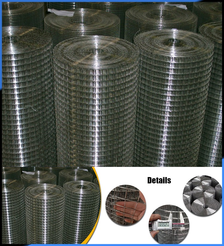 best price 6 gauge welded wire mesh for bird aviary cage