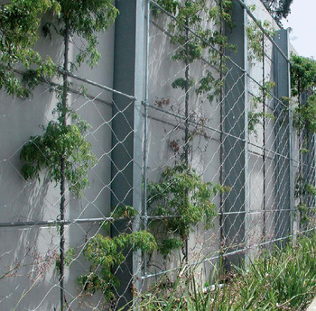 Steel Wire Fence | Hot Stainless Steel Wire Fence For Climbing Plant Support Buy