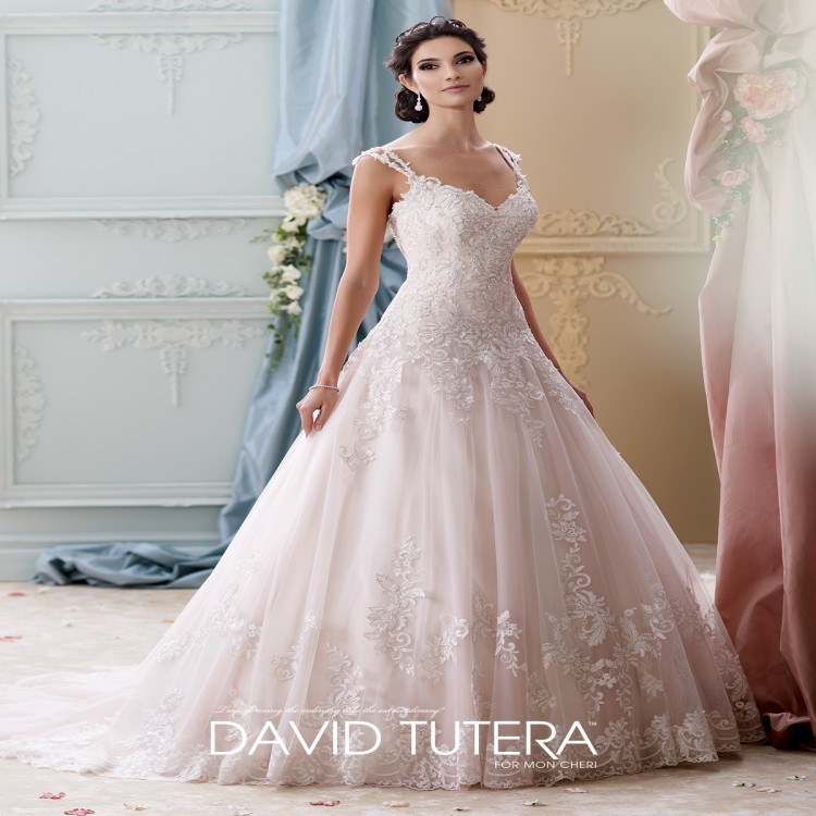 Princess Lace Bridal Ball Gowns Modest Country Wedding: Vestido De Noiva Vintage Lace Country Western Wedding