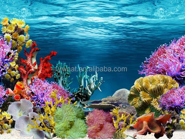 New Aquarium Accessories Plastic Aquarium Background Coral background