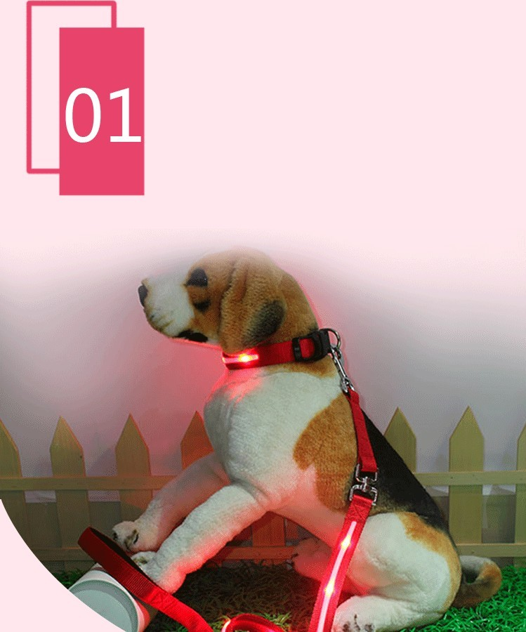 fashional safety flashing led nylon dog collar&leash with lock&custom logo on for sale