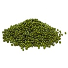 Green Mung Beans/Vigna Beans/Sprouting New Crop