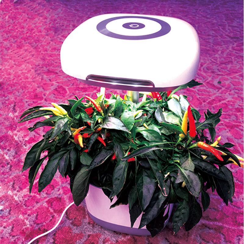 gro handel wanne in wanne system preise kaufen sie die. Black Bedroom Furniture Sets. Home Design Ideas