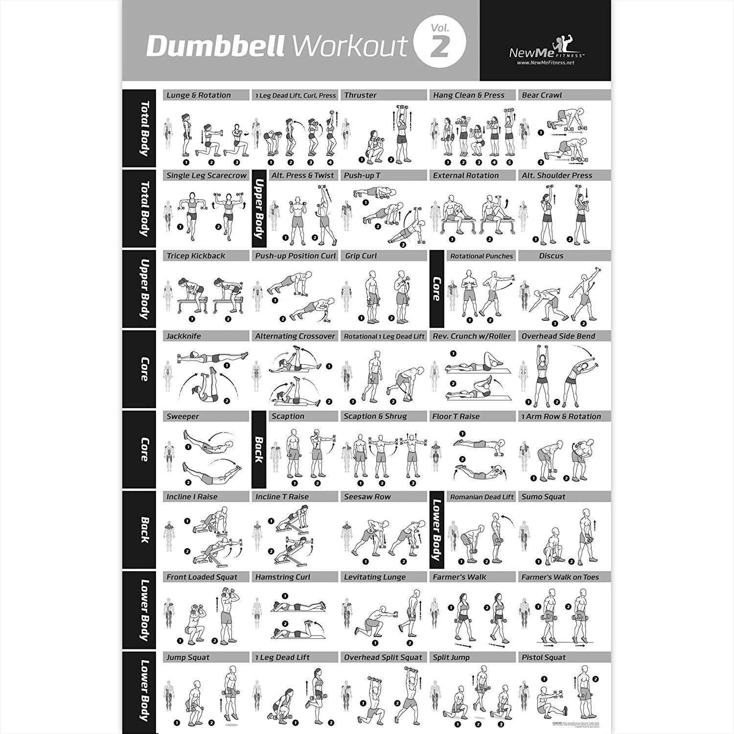 Buy Dumbbell Vol  2 Workout Exercise Poster Laminated