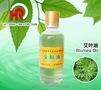 China plant fragrance oil blumea oil for health care removing toxicity