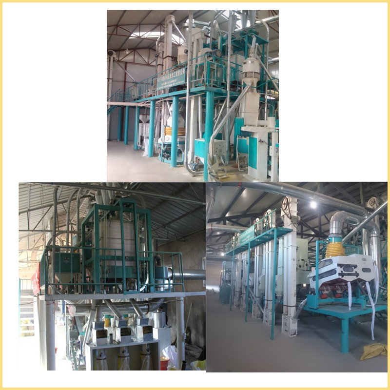 factory directly sale best price maize flour milling machine, 30 to 200 tpd maize milling plant