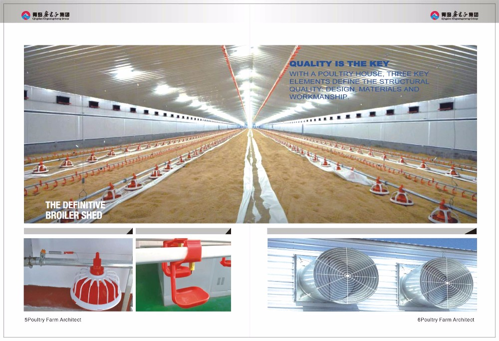 full equipment with low price steel structure Layer and broiler chicken poultry house building manufacturer in China