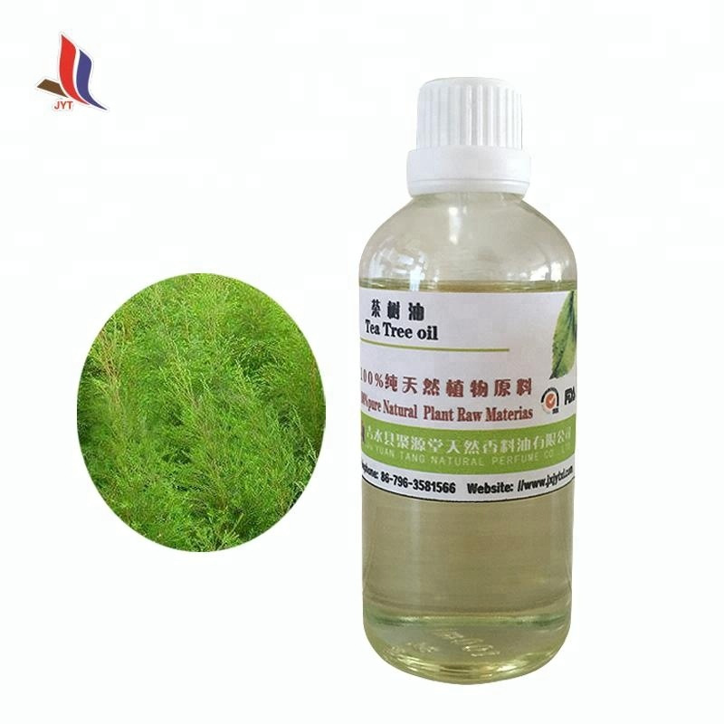 top quality Bulk Pure Natural Tea Tree Oil Medcinal Raw Material