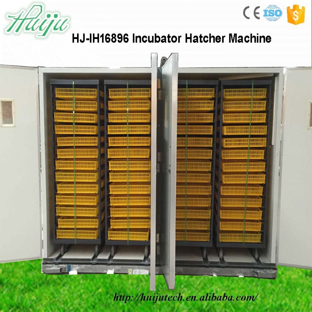 HJ-IH16896 easy to use 16896 chicken egg incubator hatching combined machine