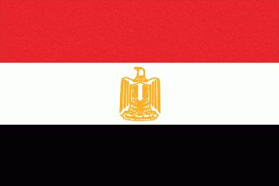 Egypt COC certification and COI certificate for steel bars