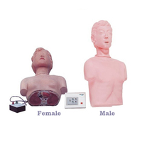 Medical science model and human half body simulation CPR Manikin for Medical Training