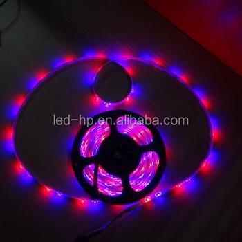 Low voltage 3528 mini led lights soldering led light strips buy low voltage 3528 mini led lights soldering led light strips aloadofball Images