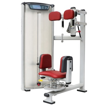 Professional bodybuilding gym fitness equipment commercial torso rotation machine for sale