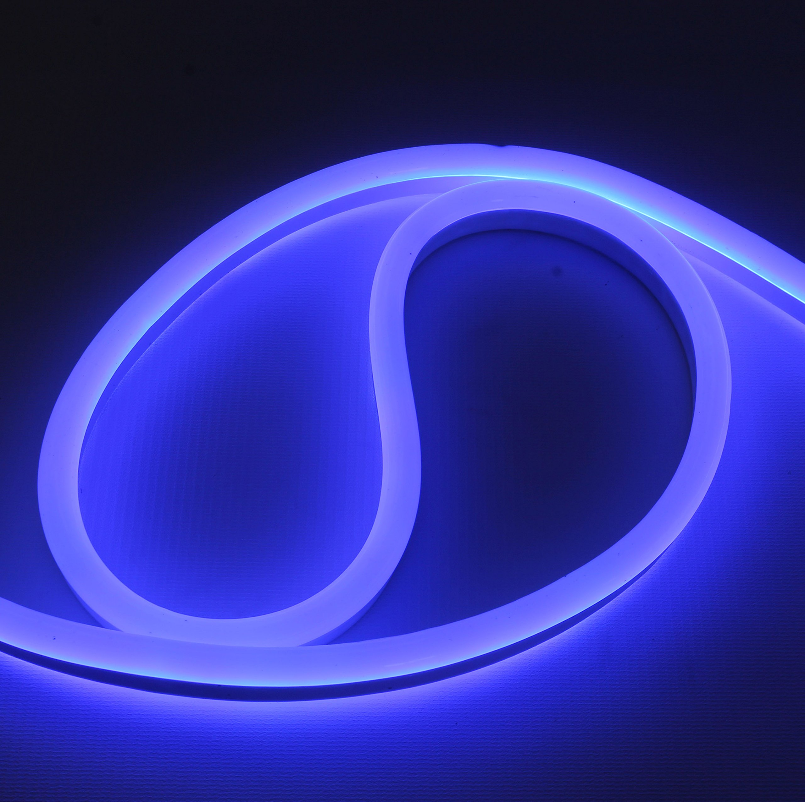12 Volt LED Flex NEON Light Strip LED Neon Flex Light, 65 Ft, Blue Waterproof Resistant, Accessories Included Ideal For Home Improvement Outdoor Rope Lighting [Ready to use] (Blue)