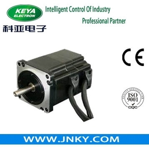 Hot Sale 57 BLDC Motor 150w, BLDC Vehicle Motor