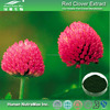 Best Sell and High quality Red Clover Extract